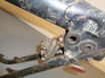 Picture of BSA A65 / Triumph 71-